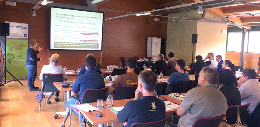 HIPRA | IBR training sessions for veterinarians